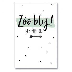 miekinvorm-mini-kaart-zoo-blij-een-mini-jij