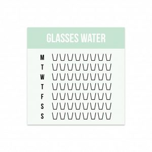 studio-stationery-mini-water-planner-per-5-stuks