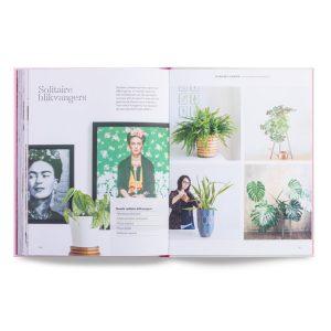 hoe-je-een-plant-groot-brengt-laurence-king-publishing
