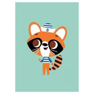 raccoon-petit-monkey